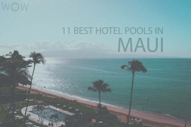11 Best Hotel Pools In Maui