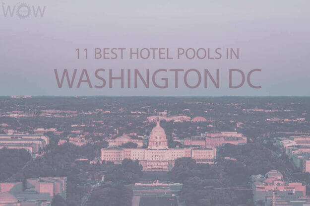 11 Best Hotel Pools In Washington DC