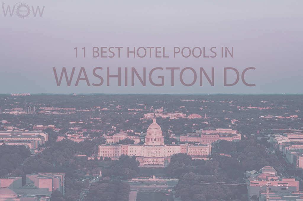 11 Best Hotel Pools In Washington DC