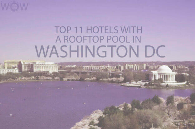 Top 11 Hotels With A Rooftop Pool In Washington DC