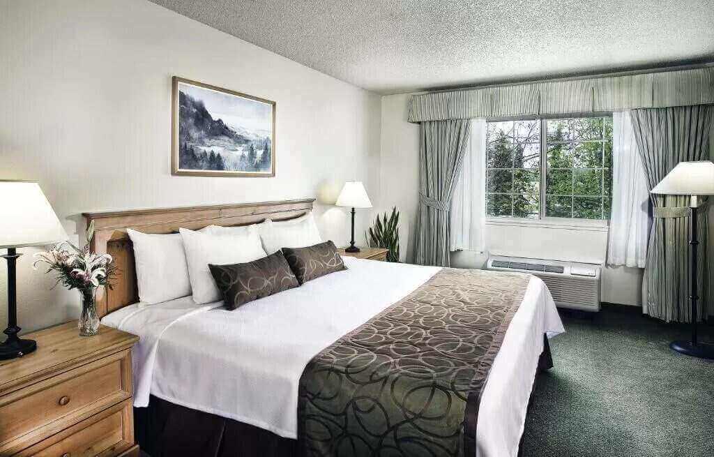 Coast Inn at Lake Hood - by Booking