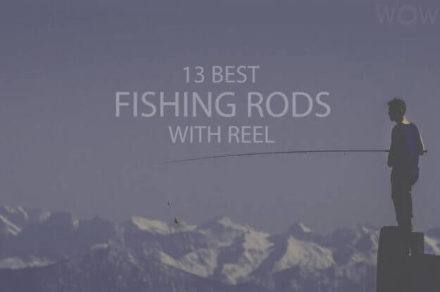 13 Best Fishing Rods with Reel