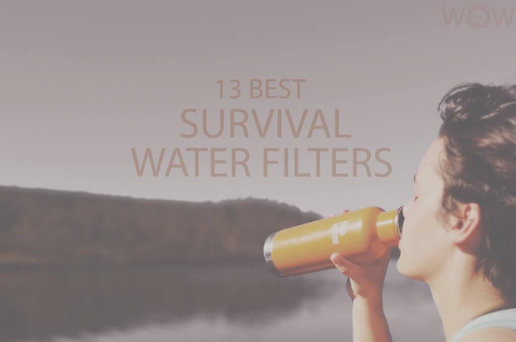 13 Best Survival Water Filters