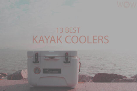 13 Best Kayak Coolers
