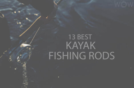 13 Best Kayak Fishing Rods