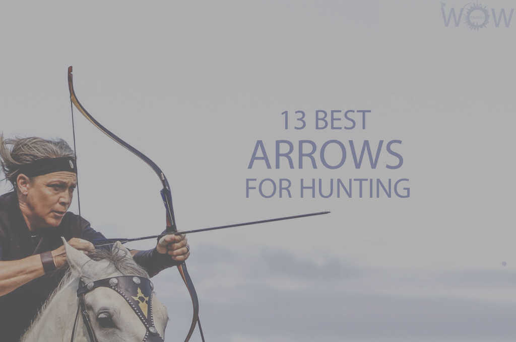 13 Best Arrows For Hunting