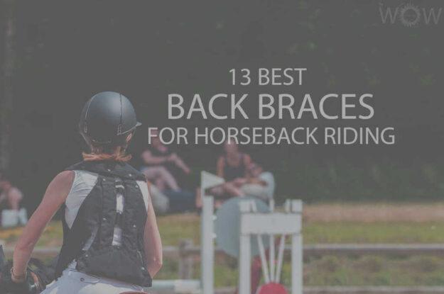 13 Best Back Braces for Horseback Riding