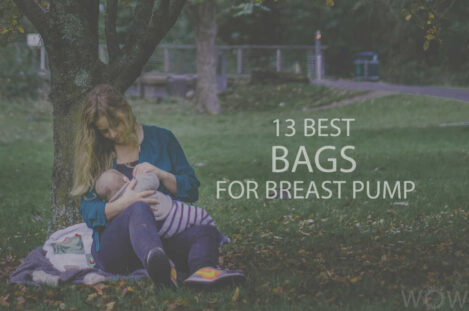 13 Best Bags For Breast Pump