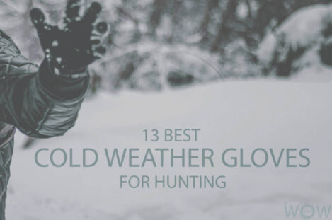13 Best Cold Weather Gloves For Hunting
