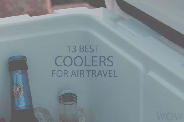 13 Best Coolers For Air Travel