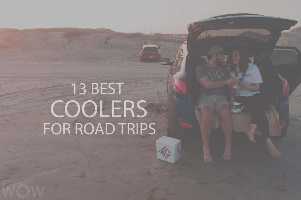 13 Best Coolers For Road Trips