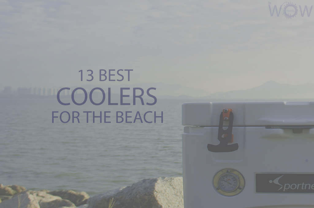 13 Best Coolers For The Beach