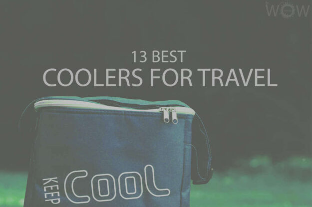 13 Best Coolers For Travel