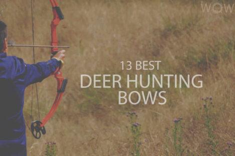 13 Best Deer Hunting Bows
