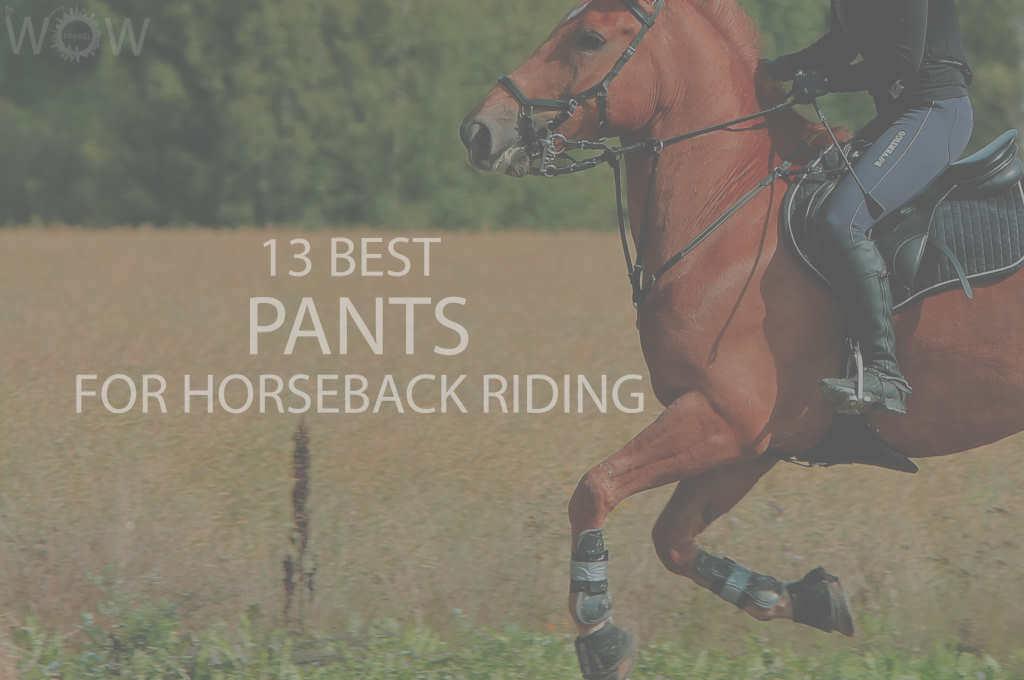 13 Best Pants for Horseback Riding