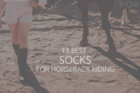 13 Best Socks for Horseback Riding