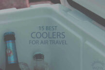15 Best Coolers for Air Travel