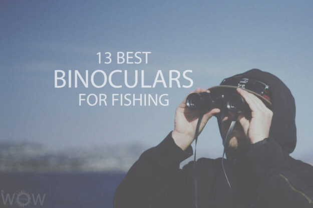 13 Best Binoculars For Fishing