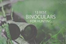 13 Best Binoculars For Hunting