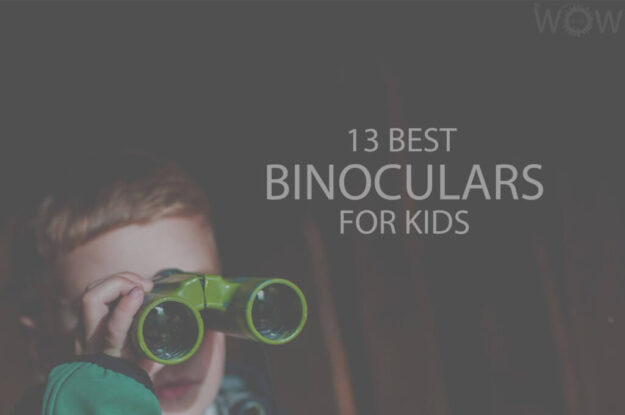 13 Best Binoculars For Kids