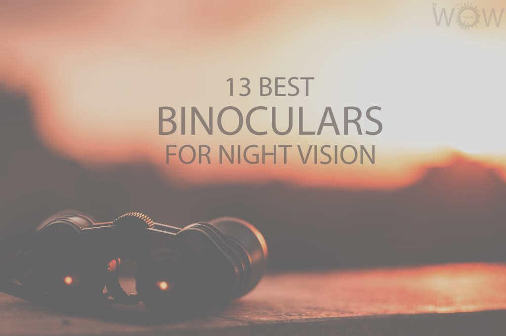 13 Best Binoculars For Night Vision