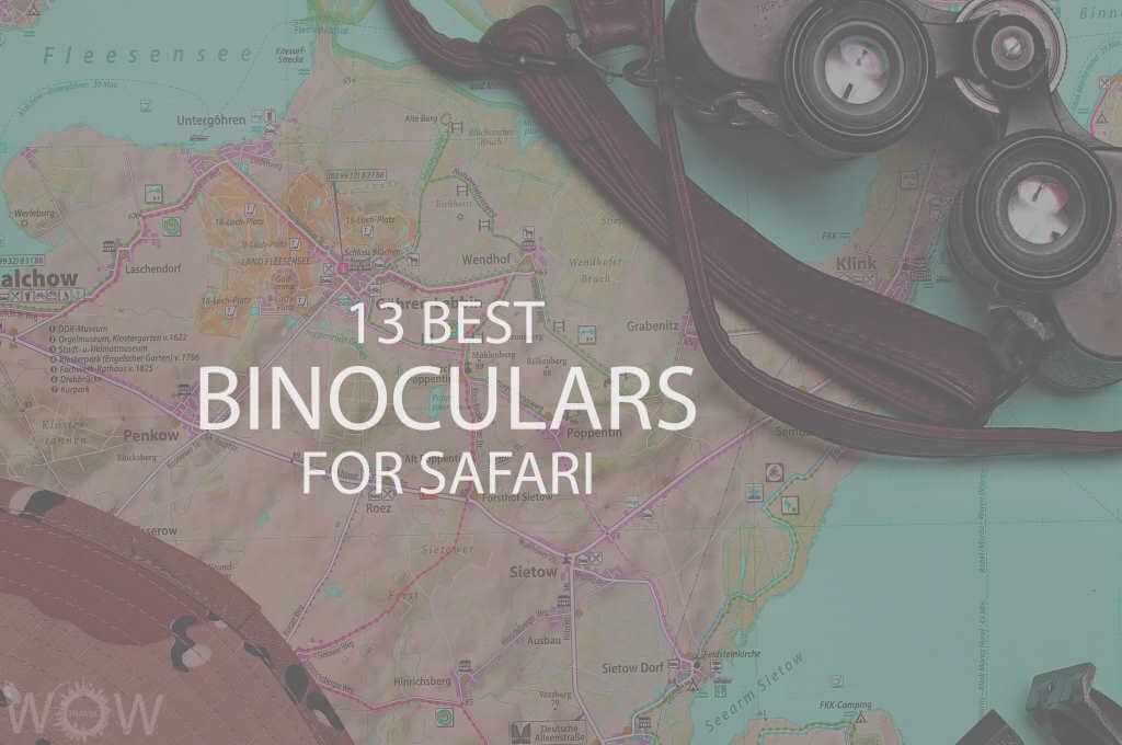 13 Best Binoculars For Safari