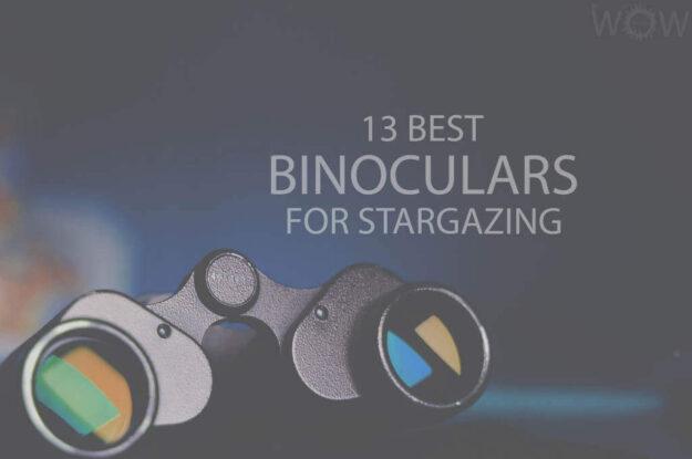 13 Best Binoculars For Stargazing