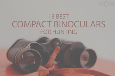 13 Best Compact Binoculars For Hunting
