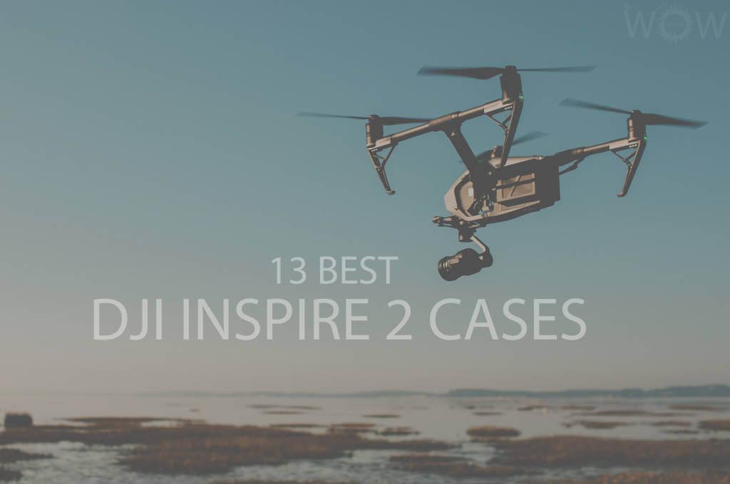 13 Best DJI Inspire 2 Cases