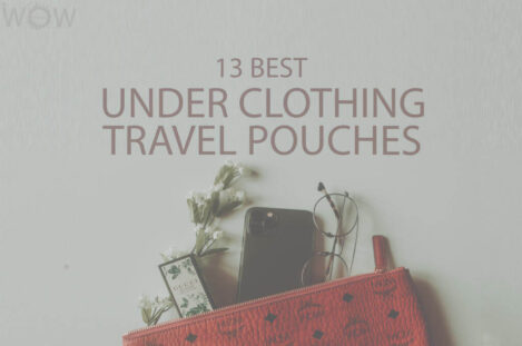 13 Best Under Clothing Travel Pouches