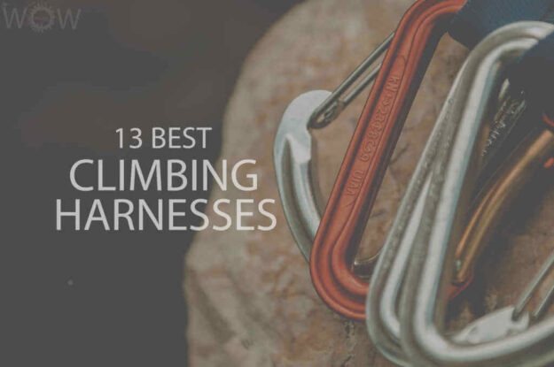 13 Best Climbing Harnesses