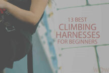 13 Best Climbing Harnesses for Beginners