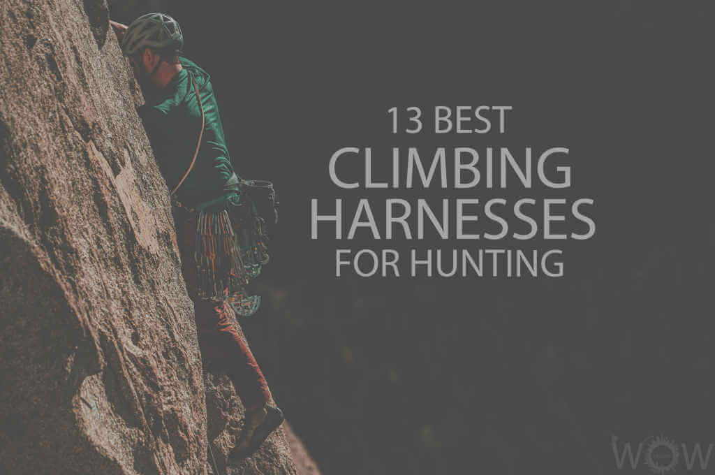 13 Best Climbing Harnesses for Hunting