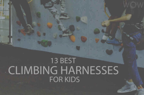 13 Best Climbing Harnesses for Kids