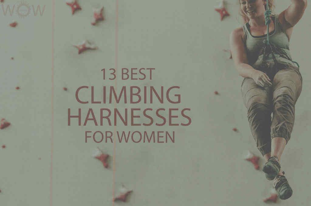 13 Best Climbing Harnesses for Women
