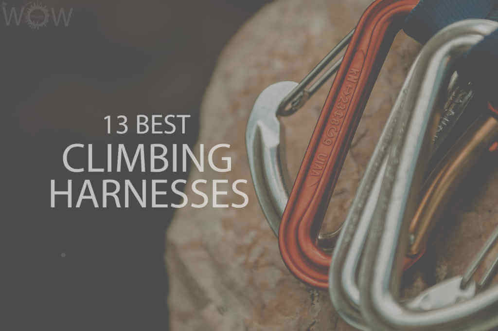13 Best Climbing Harnesses