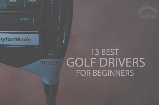 13 Best Golf Drivers for Beginners