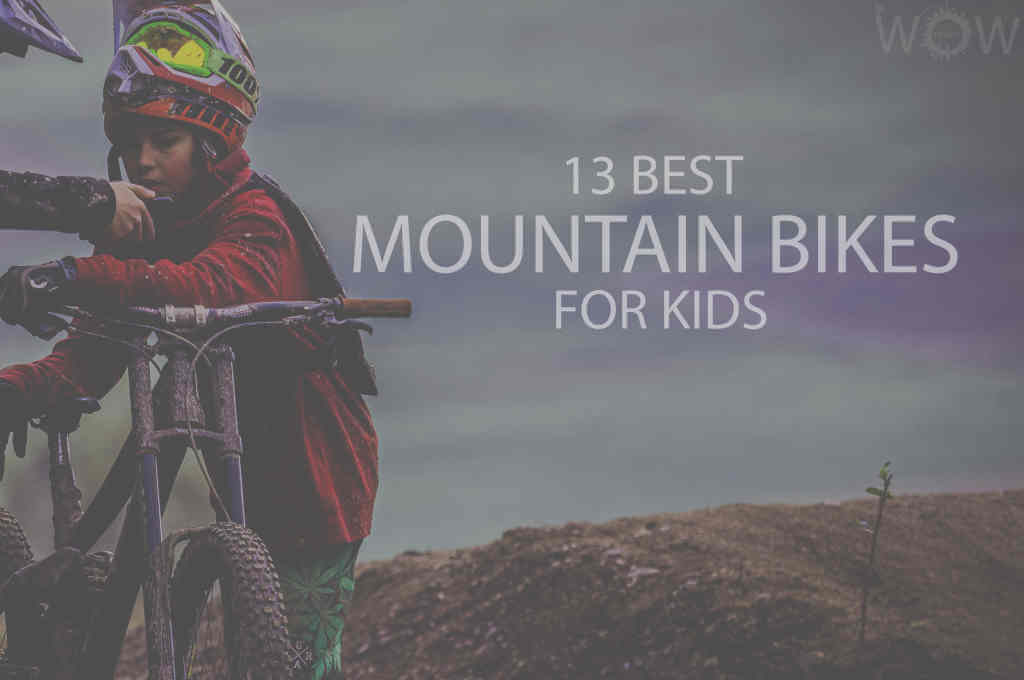 13 Best Mountain Bikes for Kids
