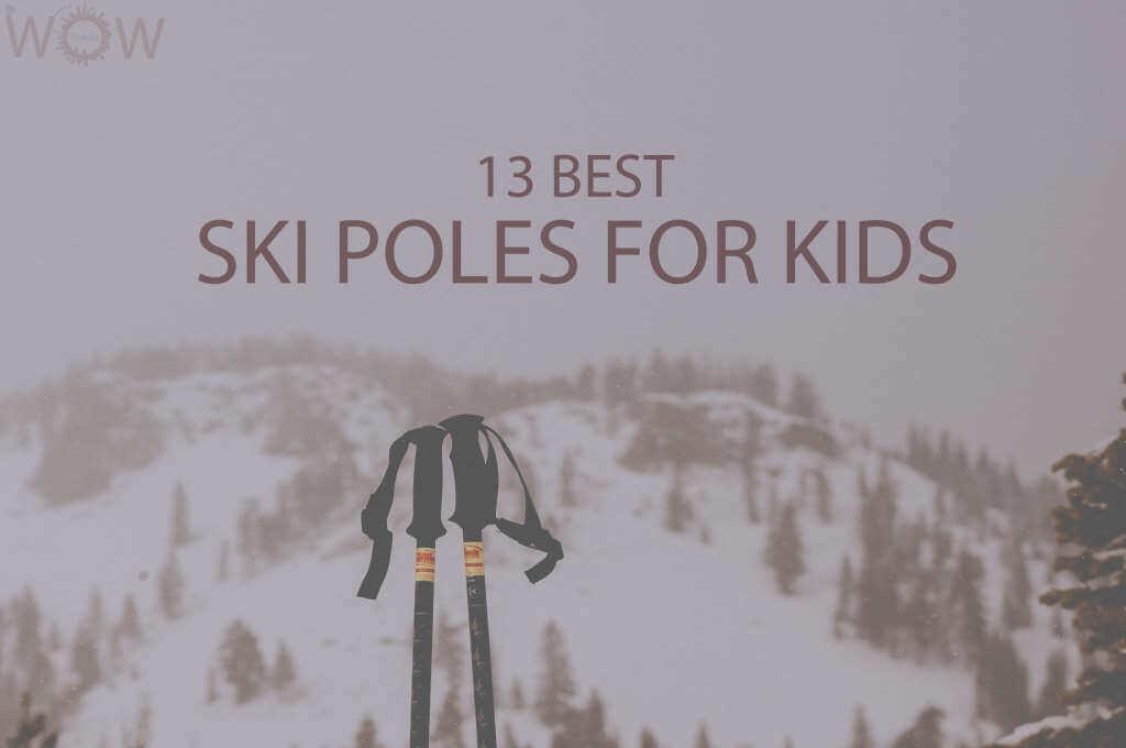 13 Best Ski Poles for Kids