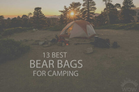 13 Best Bear Bags for Camping
