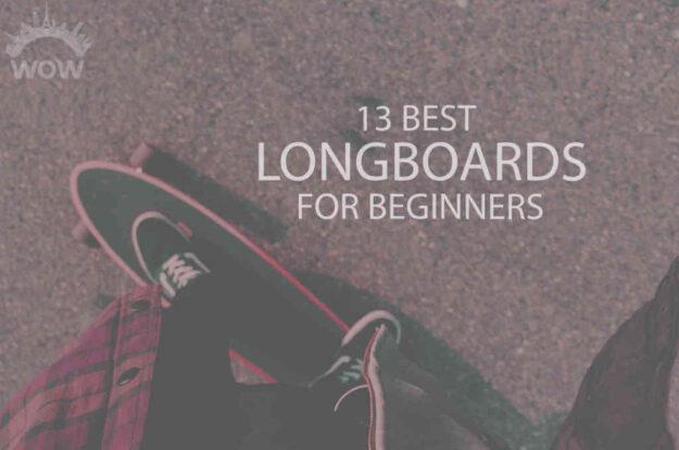 13 Best Longboards for Beginners