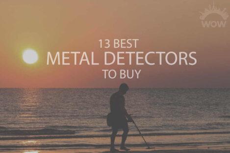 13 Best Metal Detectors to Buy