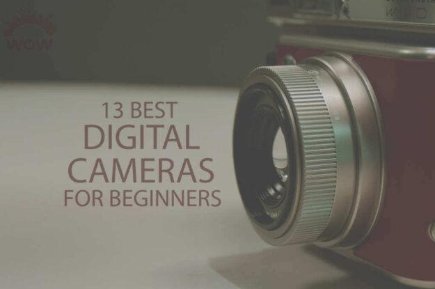 13 Best Digital Cameras for Beginners