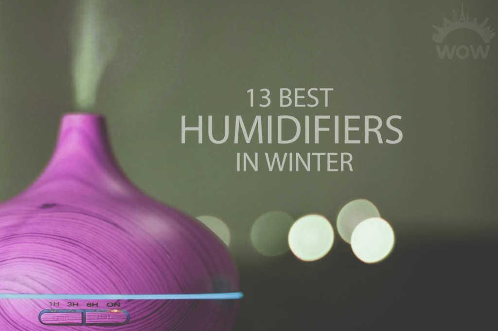 13 Best Humidifiers in Winter