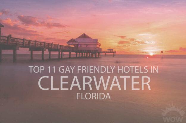 Top 11 Gay Friendly Hotels In Clearwater FL