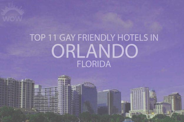 Top 11 Gay Friendly Hotels In Orlando