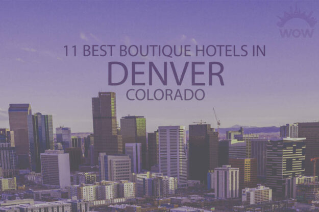 11 Best Boutique Hotels in Denver, Colorado