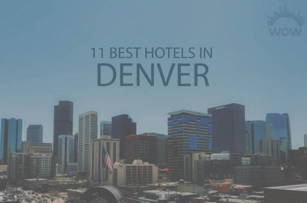11 Best Hotels in Denver