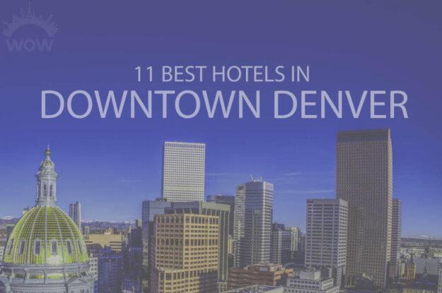 11 Best Hotels in Downtown Denver
