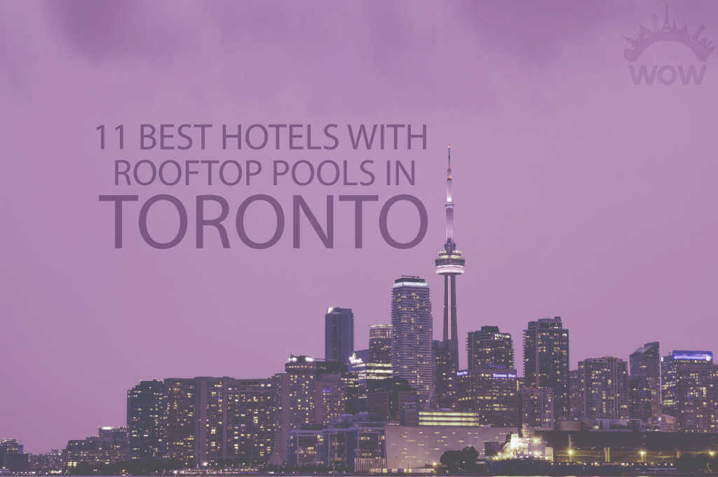 11 Best Hotels with Rooftop Pools in Toronto